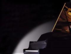 Чехол для рояля Petrof VI